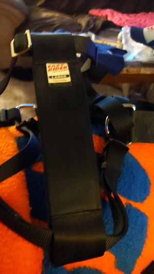 Easy Rider car harness Large for Sale in Neenah, WI