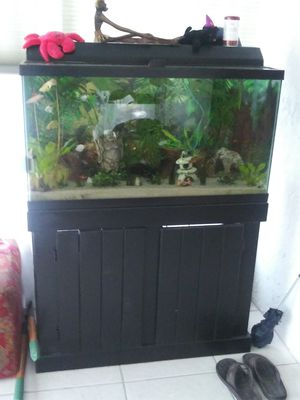 Fish tank /Aquarium 40 g for Sale in Tarpon Springs, FL