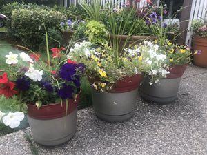 Matching trio flower pot for Sale in Renton, WA
