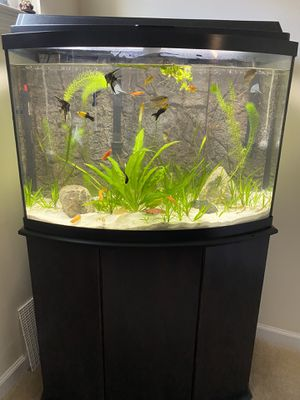 36 Gallon Bow Front Glass Tank with Cabinet for Sale in Aurora, IL