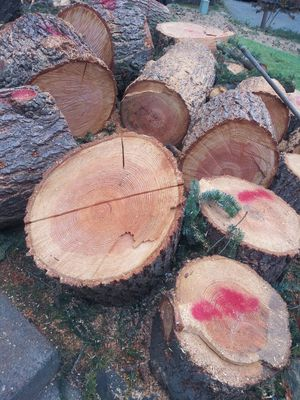 Firewood for Sale in Federal Way, WA