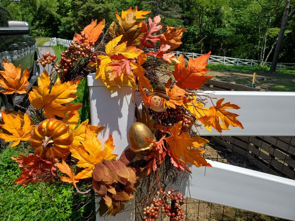 Fall Halloween decorations bundle set