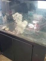 75 Gall Fish Tank Aquarium Reef Tank for Sale in Fontana,  CA