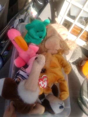 Beanie Babies for Sale in North Little Rock, AR