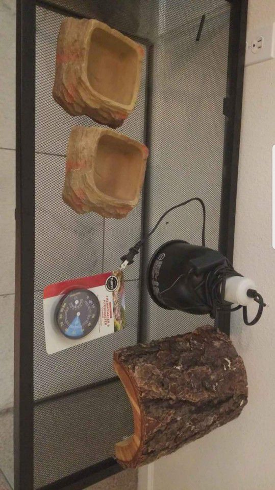 40 Gallon Reptile Tank And Accessories