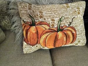 Fall pillows for Sale in Palatine, IL