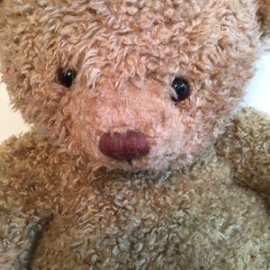 Teddy Bear for Sale in Weston, FL