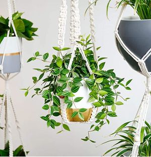 Easy On The Eyes! Update Your Space With High-End, Chic & Classy Plant Pots! for Sale in Frederick, MD