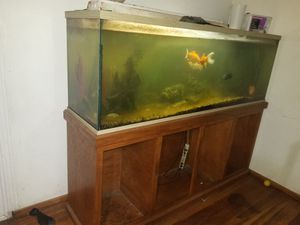 Huge fish tank for Sale in Fresno, CA