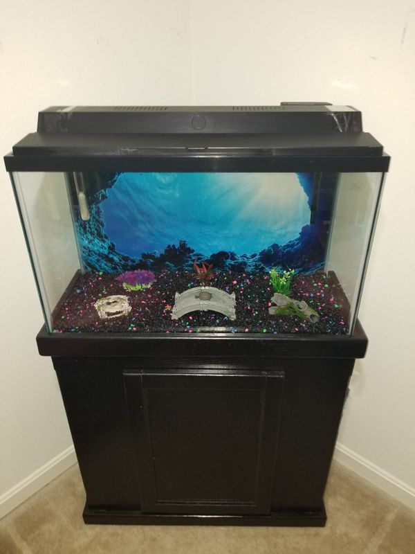 35 gallons aquarium with top fluorescent light,heater,water filter,decorations,gravel and gravel vacuum cleaner included
