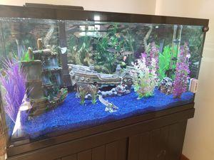 120 Gallon Custom Fish Tank for Sale in Vermilion, OH