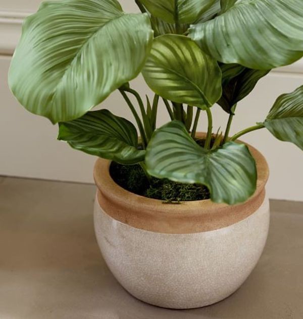 Pottery Barn New Crackle Cachepot Indoor Pots/Planters (Set of 3)