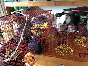 4 BRAND NEW Blue Crab Traps red and yellow funnel custom made for Sale in New Port Richey, FL