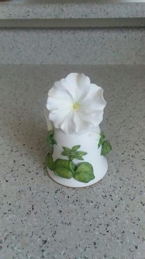 White Cascade Petunia By Jeane Holgate Franklin Mint Bone China for Sale in Las Vegas, NV