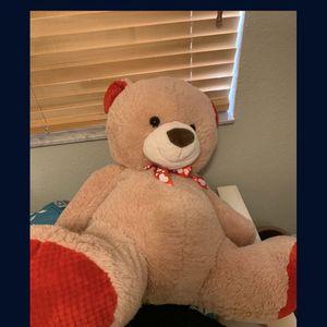 Bear for Sale in Miami, FL