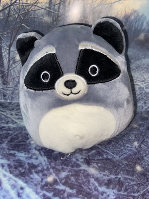 "Squishmallow Randy Racoon 6"" plush. for Sale in Bellflower, CA"