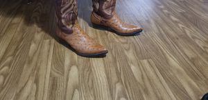 Ostrich and Work boots for Sale in Dallas, TX