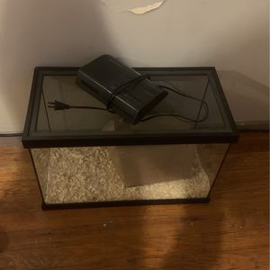 Reptile Bed for Sale in Compton, CA