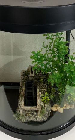 10 Gallon Fish Tank for Sale in Fresno,  CA