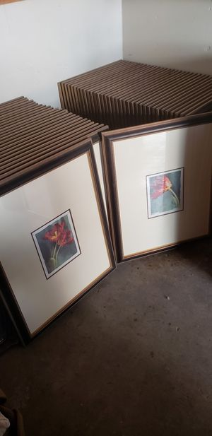 Batch of 2 different paintings / prints in wooden frame with glass, 25X single flower and 35X double flowers $150,- firm price. Must pick up. for Sale in Las Vegas, NV