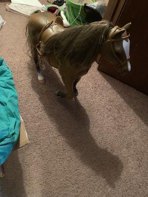 Horse for Sale in Petersburg, VA