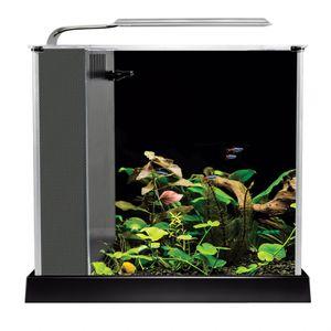 Fluval SPEC Fish Tank 2.6 Gallon aquarium for Sale in Vancouver, WA