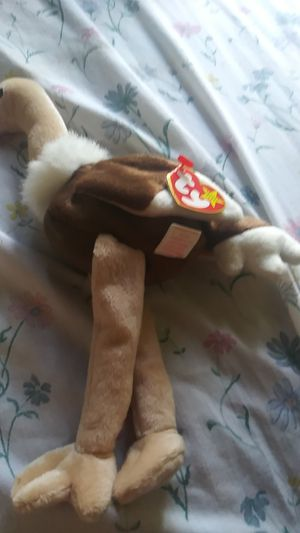 Beanie baby for Sale in Greenville, SC