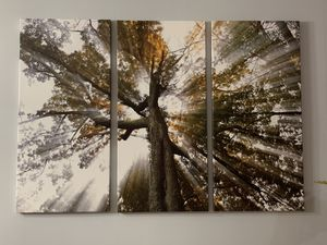 Nice canvas 3 piece picture!!! for Sale in Minneapolis, MN