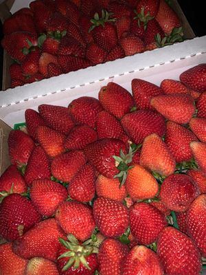 Strawberries‼️ Boxes‼️ Letters‼️ for Sale in Whittier, CA