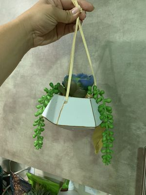 Handing Diamond Succulent planter for Sale in Winter Park, FL