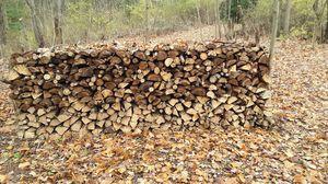 Seasoned firewood for Sale in Hastings, MI