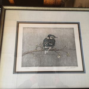 Collection Of Frame Photos/Birds/Western for Sale in Glendale, AZ