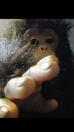 TOY PLUSH - BUBBLES The Cuddle Chimp Interactive, FurReal Friends for Sale in Raleigh, NC