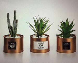 Opps Mini Artificial Plant Kit for Sale in St. Petersburg, FL