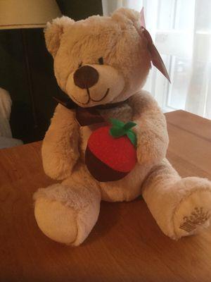 TEDDY BEAR from Sherri's Berries for Sale in Avondale Estates, GA