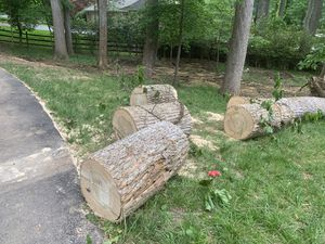 Free Wood logs for Sale in Potomac, MD