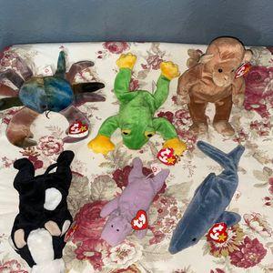 TY Original Beanie Baby Wildlife for Sale in Delray Beach, FL