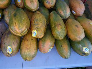 Papayas dulces, $2 cada una for Sale in Homestead, FL