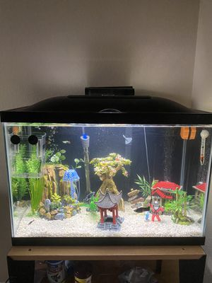 Cycled Fish Tank 20g for Sale in Round Rock, TX