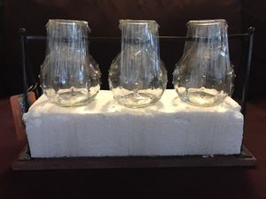 Vases - propagation station for Sale in Renton, WA
