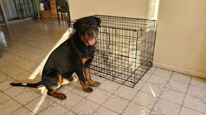 Dog crate / Cage for Sale in San Diego, CA