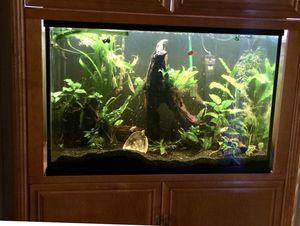 Aquarium - 150 gallon for Sale in Chula Vista, CA