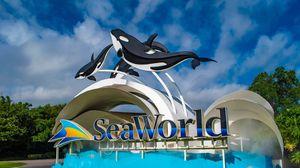 Sea world San Diego tickets for Sale in Torrance, CA