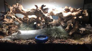 Reptile tank for Sale in La Puente, CA