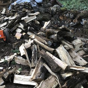 Half Cord Of Split And Seasoned Oak Firewood for Sale in Salem, OR