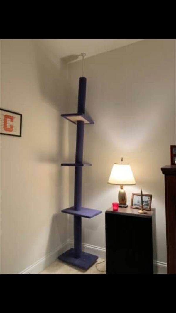 Tall Large Cat Tree House
