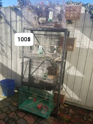 Cages for birds for Sale in Jamul, CA
