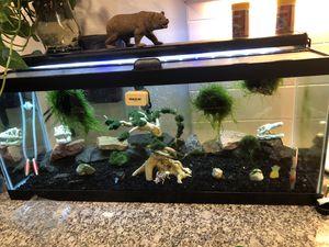Fish tank 20 gallon long for Sale in Denver, CO