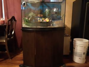 Fish tank w/stand for Sale in Woodstock, IL