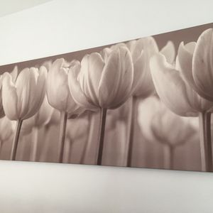 Beautiful IKEA Canvas Print 55x22 Brown Undertone for Sale in Los Angeles, CA